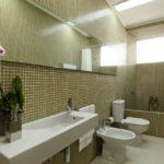 Дизайн ванной комнаты в частном доме кафель и белый санфаянс