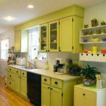 зеленая кухня варианты идеи