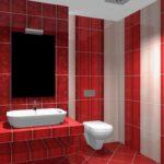 идея необычного декора ванной комнаты с облицовкой плиткой фото