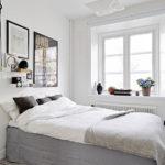 Комнатные растения на подоконнике спальни