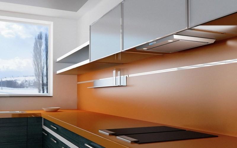 фото кухонь со встроенной вытяжкой нём