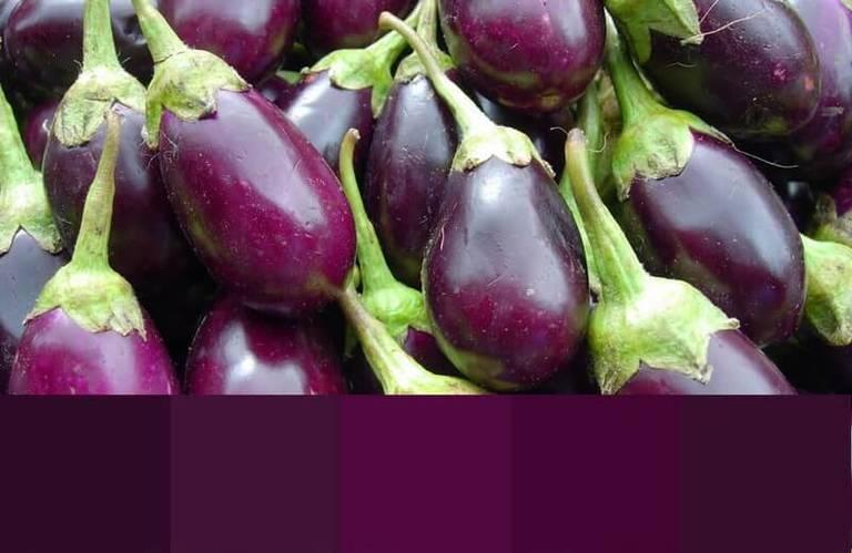 Природные оттенки цвета баклажан