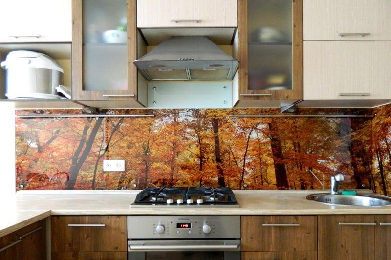 Осенний лес на кухонном фартуке из стекла
