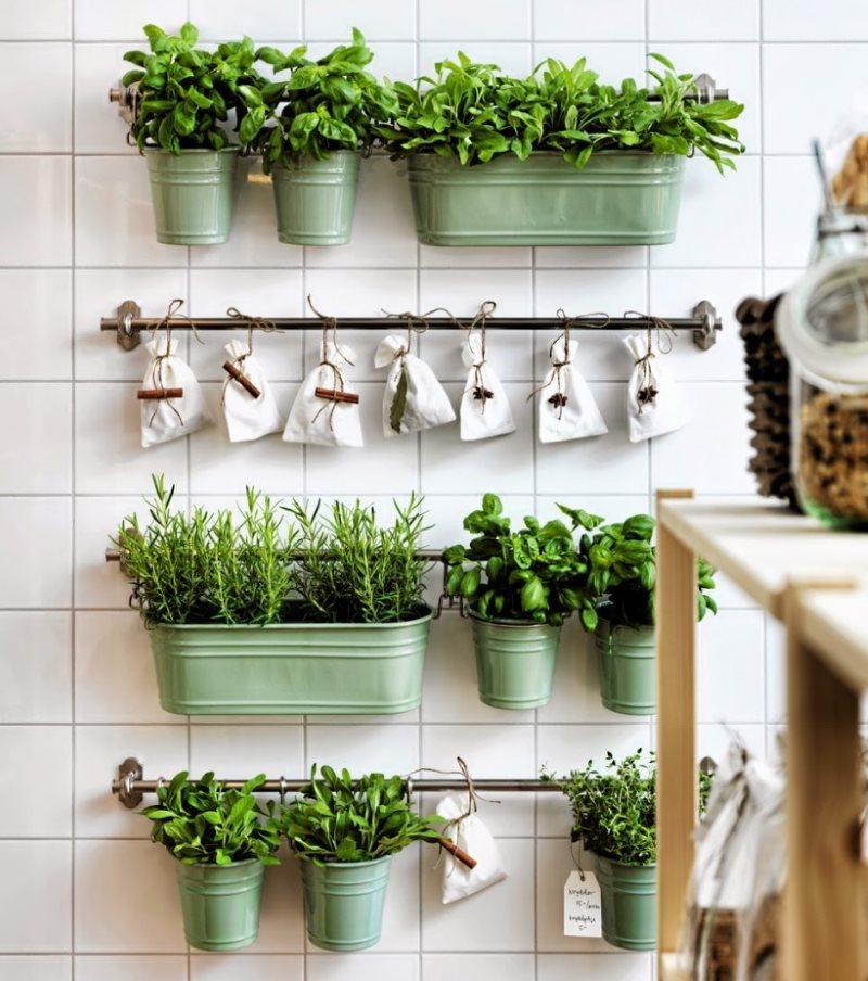 Размещение горшков с травами на кухонных рейлингах