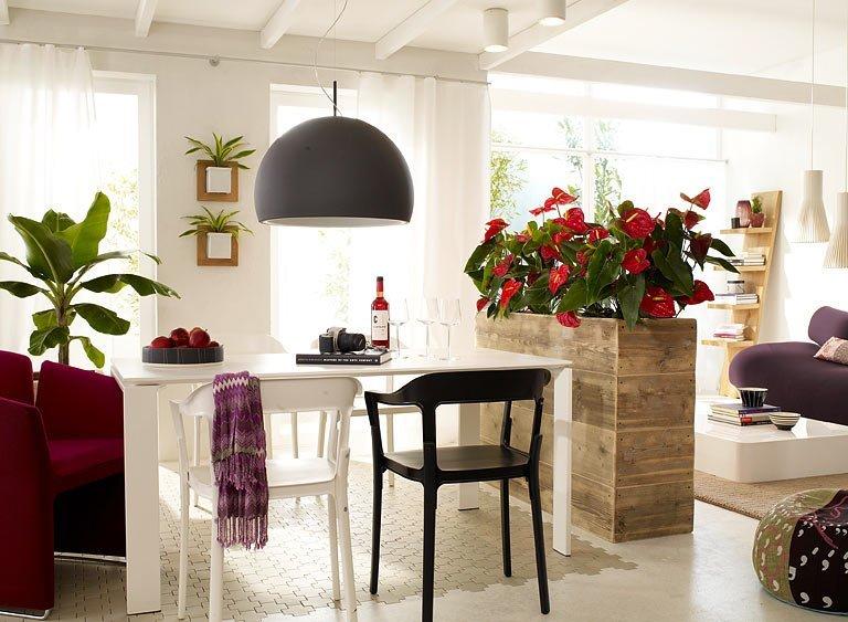 Живые цветы в интерьере кухни-гостиной