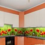 Красные маки на кухонном фартуке