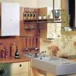 Кухня с полуостровом и газовой колонкой