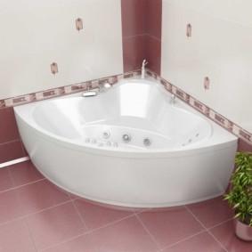 Комнатный цветок около акриловой ванны