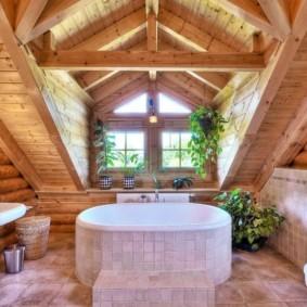 Домашние растения в комнате с деревянным потолком
