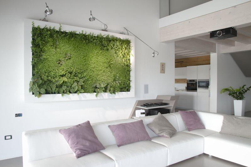 Живой ковер на стене кухни-гостиной в эко-стиле