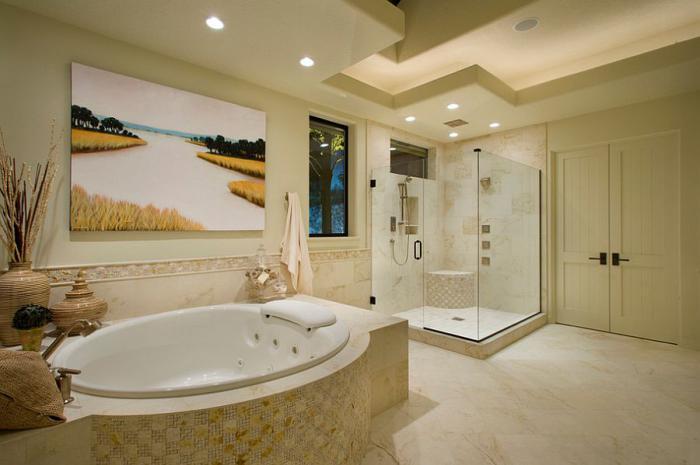душевая кабина в ванной комнате фото интерьер