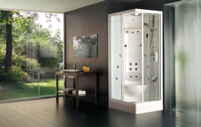 душевая кабина в ванной комнате идеи интерьера