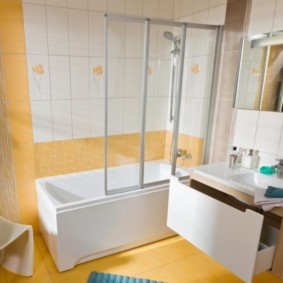 экран в ванной комнате виды