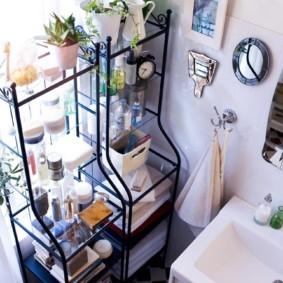 Комнатные цветки на полках в ванной