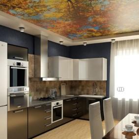 Дизайн кухни с фотобоями на потолке
