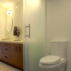 Зонирование совмещенной ванной с помощью стеклянной двери