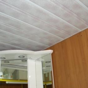 Пластиковые панели на потолке санузла