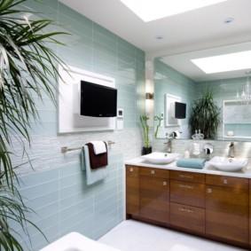 Драцена в интерьере ванной комнаты