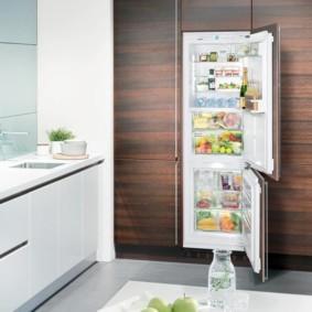 холодильник на кухне идеи дизайн