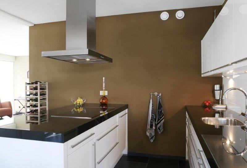 Коричневая стена на кухне с островом
