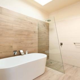 шторка для ванной комнаты из стекла фото декор