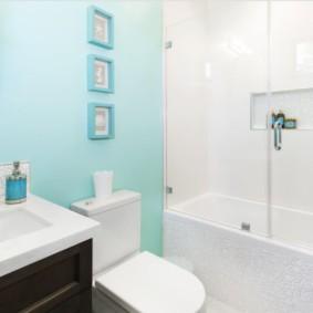 шторка для ванной комнаты из стекла идеи варианты