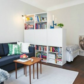 спальня-гостиная 18 кв.м. фото виды