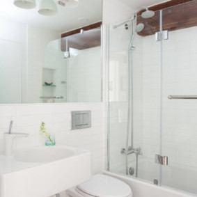 раздвижные шторки для ванной фото интерьера