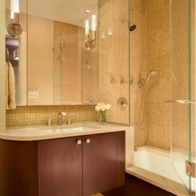 раздвижные шторки для ванной варианты фото
