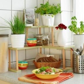 Комнатные цветы в декоре кухни