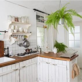 Комнатный папоротник под потолком кухни