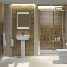 Дизайн санузла без ванны с душем