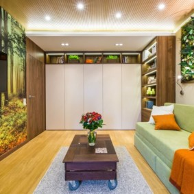 гостиная 19 кв метров идеи варианты