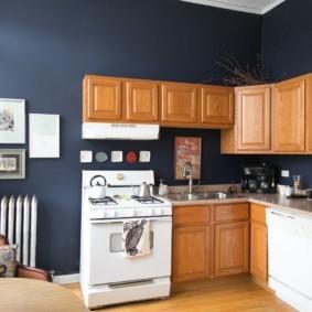 краска для кухни фото интерьер