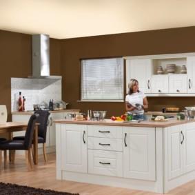 краска для кухни фото оформления