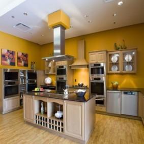 краска для кухни варианты фото