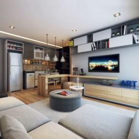 кухня совмещенная с залом фото видов