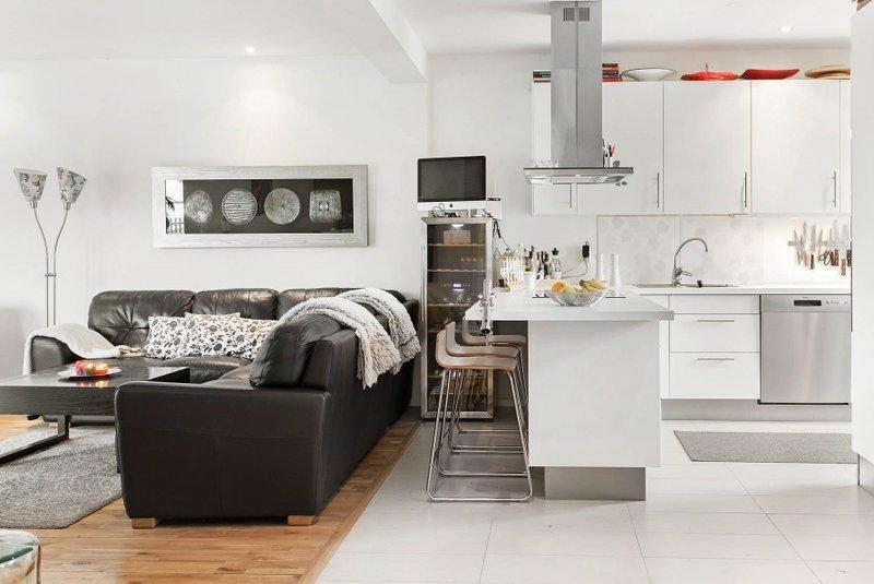 кухня студия в квартире фото дизайн