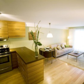 кухня гостиная 22 квадратных метра виды декора