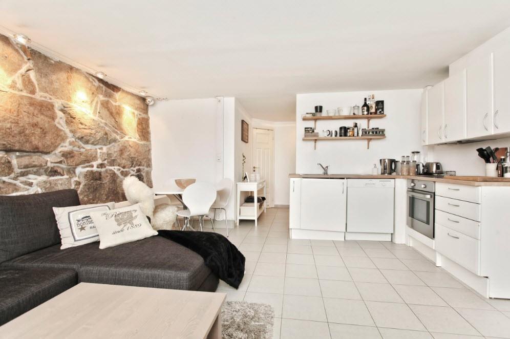 кухня студия в квартире фото вариантов