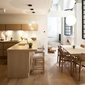 кухня студия в квартире интерьер идеи