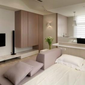 однокомнатная квартира с кроватью и диваном виды интерьера