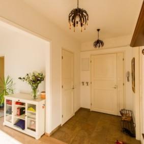 светлые двери в квартире идеи видов