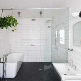 Стеклянная перегородка в совмещенной ванной