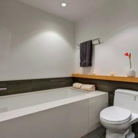 Крашенные стены вместо кафеля в ванной комнате