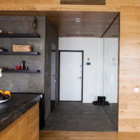 Входная зона в однокомнатной квартире