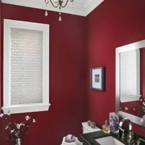Бардовая краска на стене в санузле