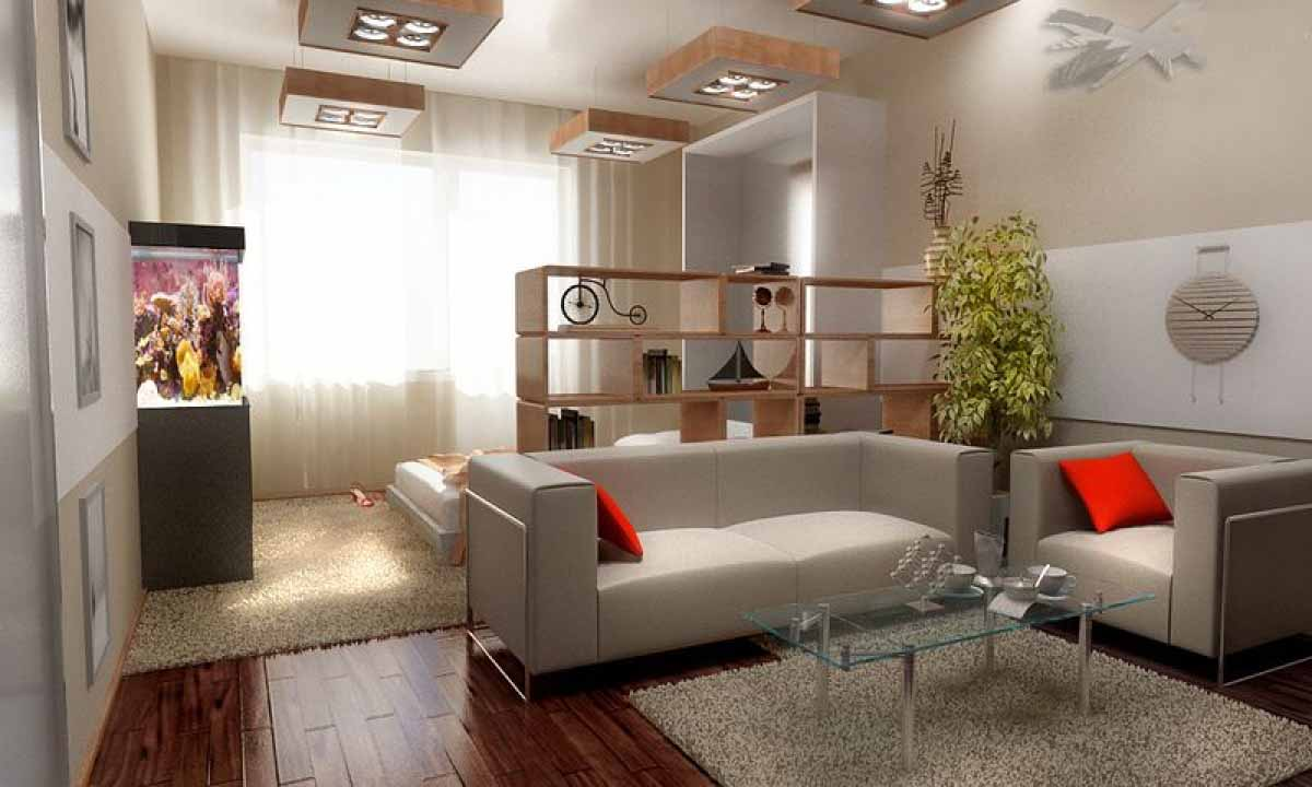гостиная спальня площадью 20 кв м фото виды
