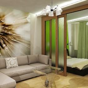 гостиная спальня площадью 20 кв м фото дизайн