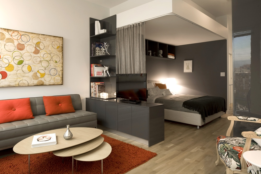гостиная спальня площадью 20 кв м интерьер идеи